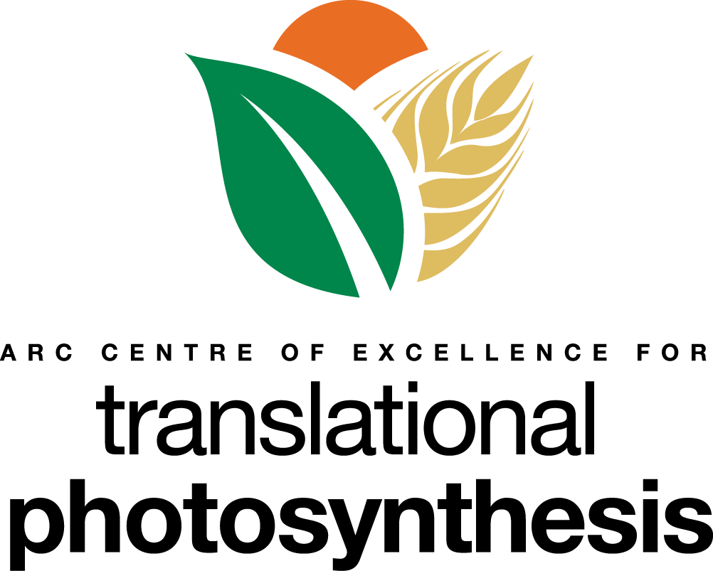 Translational Photosynthesis